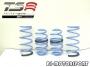Nissan Sentra Спортивные пружины TS